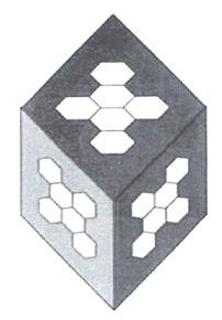 """Принципиальная модель кластера воды из 912 молекул (16 """"квантов"""" воды)."""